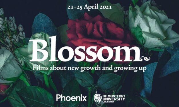 Leicester's Phoenix and De Montfort University collaborate on free online film festival