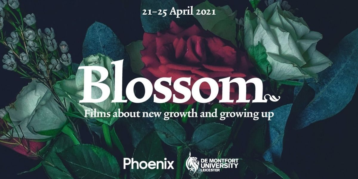 Leicester's Phoenix and De Montfort University collaborate on free online film festival